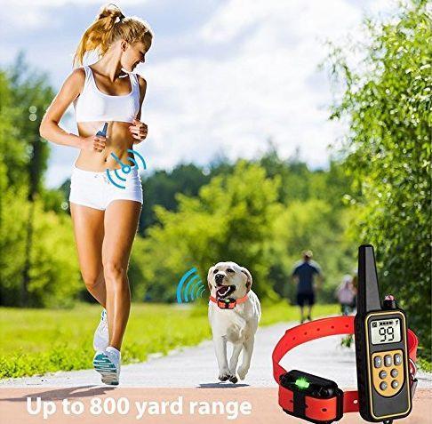 Long range Dog training collar